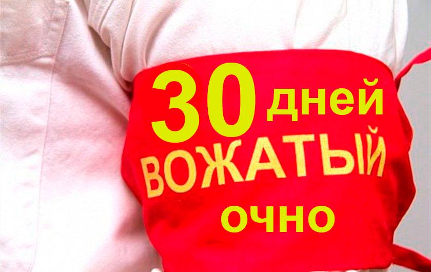 Школа Вожатых, Вожатый очные курсы 30 дней