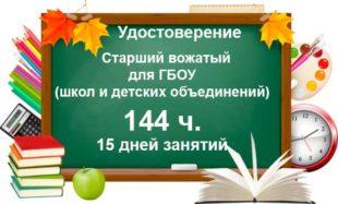 Старший вожатый для ГБОУ (школ и детских объединений) 144 часа
