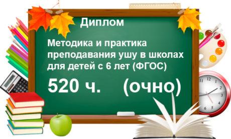 Ушу, курс, диплом, профпереподготовка для учителей, купить